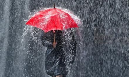 Rainy Days and Mondays